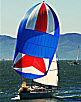 "Sailing Basics - How to ""Rock 'n Dock"" Your Sailboat!"
