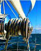 Sail Trim Secrets - Loaded Sailing Line Safety