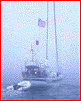 "Seven Sailing ""Low Visibility"" Tips to Get You Home"