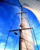 Five Mainsail Handling Sailing Tips from the Pros