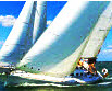 Five Sailing Tips to Stop Your Sailboat Under Sail!
